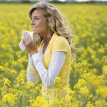 3 trükk, hogyan éljük túl az allergiaszezont