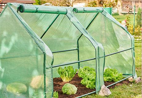 Grow Garden fóliasátor